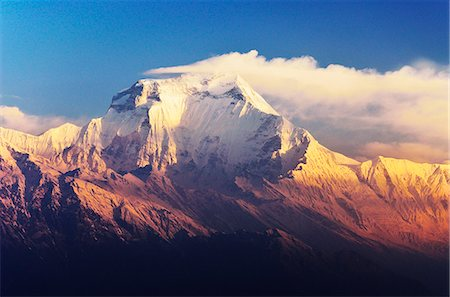 Dhaulagiri Himal seen from Khopra, Annapurna Conservation Area, Dhawalagiri (Dhaulagiri), Western Region (Pashchimanchal), Nepal, Himalayas, Asia Stock Photo - Rights-Managed, Code: 841-06446599