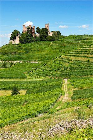 Ortenberg Castle, Ortenberg, Ortenau, Baden-Wurttemberg, Germany, Europe Stock Photo - Rights-Managed, Code: 841-06446750