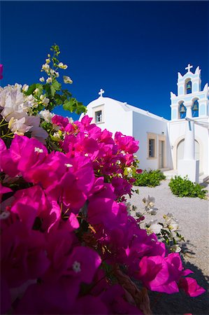 Greek church and flowers, Santorini, Cyclades, Greek Islands, Greece, Europe Stock Photo - Rights-Managed, Code: 841-06447305