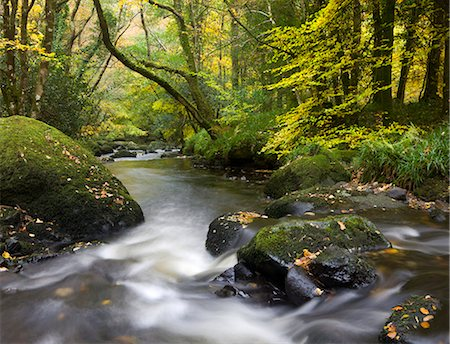 dartmoor national park - Beautiful autumnal colours line the banks of the River Teign at Fingle Bridge, Dartmoor National Park, Devon, England, United Kingdom, Europe Stock Photo - Rights-Managed, Code: 841-06447511