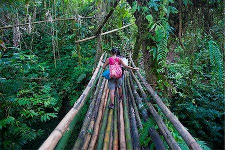 Bamboo bridge in the interior leading to Millennium cave, Island of Espiritu Santo, Vanuatu, South Pacific, Pacific Stock Photo - Rights-Managed, Code: 841-06448267