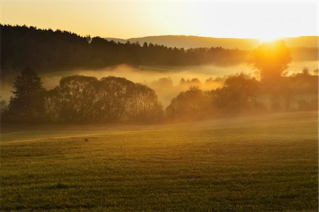 Morning for in the Neckartal (Neckar valley), near Villingen-Schwenningen, Black Forest, Schwarzwald-Baar, Baden-Wurttemberg, Germany, Europe Stock Photo - Rights-Managed, Code: 841-06500606