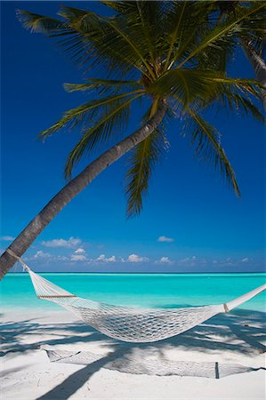 Hammock on tropical beach, Maldives, Indian Ocean, Asia Stock Photo - Rights-Managed, Code: 841-06501294