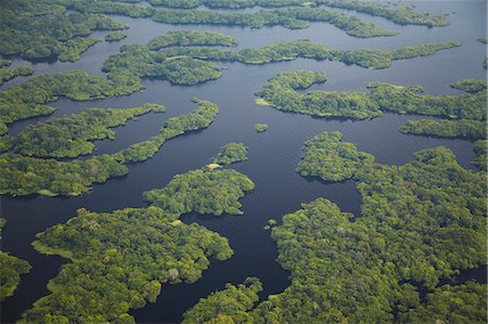 Aerial view of Amazon rainforest and tributary of the Rio Negro, Manaus, Amazonas, Brazil, South America Stock Photo - Rights-Managed, Code: 841-06501438
