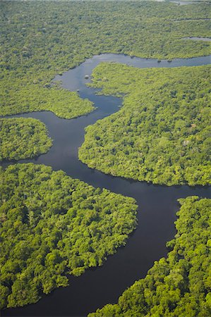 Aerial view of Amazon rainforest and tributary of the Rio Negro, Manaus, Amazonas, Brazil, South America Stock Photo - Rights-Managed, Code: 841-06501439