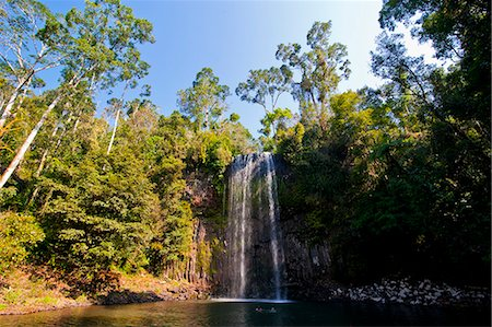 queensland - Millaa Millaa Falls, Atherton Tablelands, Queensland, Australia, Pacific Stock Photo - Rights-Managed, Code: 841-06502257