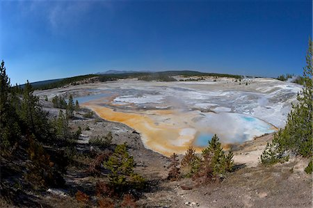 Porcelain Springs, Porcelain Basin, Norris Geyser Basin, Yellowstone National Park, UNESCO World Heritage Site, Wyoming, United States of America, North America Stock Photo - Rights-Managed, Code: 841-06502717