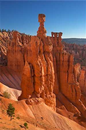 Thor's Hammer in early morning from Sunset Point, Bryce Canyon National Park, Utah, United States of America, North America Fotografie stock - Rights-Managed, Codice: 841-06502780