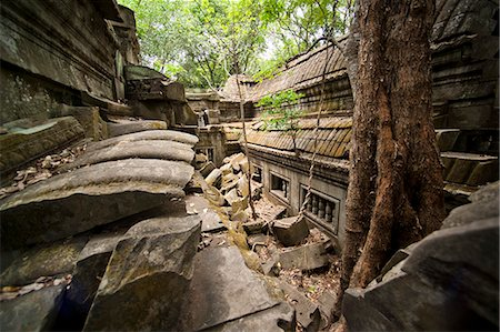 Ta Prohm Temple, Angkor, UNESCO World Heritage Site, Siem Reap, Cambodia, Indochina, Southeast Asia, Asia Stock Photo - Rights-Managed, Code: 841-06503415