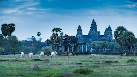 Temple Complex of Angkor Wat, Angkor, UNESCO World Heritage Site, Siem Reap, Cambodia, Indochina, Southeast Asia, Asia Stock Photo - Rights-Managed, Code: 841-06503426