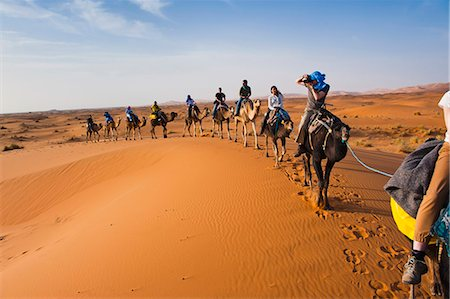 Tourists on a camel ride in Erg Chebbi Desert, Sahara Desert near Merzouga, Morocco, North Africa, Africa Stock Photo - Rights-Managed, Code: 841-06804627