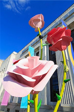 rose - Frist Center For The Visual Arts, Nashville, Tennessee, United States of America, North America Stock Photo - Rights-Managed, Code: 841-06806514