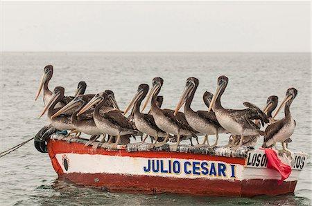 Fishing boats in Los Organos village near Mancora, Peru, South America Stock Photo - Rights-Managed, Code: 841-06806701