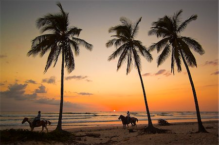Horse riders at sunset, Playa Guiones surfing beach, Nosara, Nicoya Peninsula, Guanacaste Province, Costa Rica, Central America Stock Photo - Rights-Managed, Code: 841-06807419