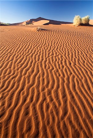 Sand Ripples on one of the ancient orange dunes of the Namib Desert at Sossusvlei, near Sesriem, Namib Naukluft Park, Namibia, Africa Stock Photo - Rights-Managed, Code: 841-07081690