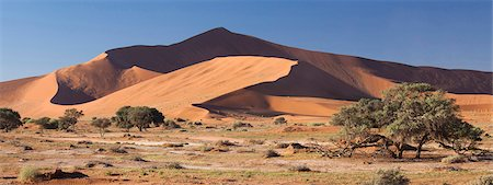 Panoramic view of the Ancient orange sand dunes of the Namib Desert at Sossusvlei, near Sesriem, Namib Naukluft Park, Namibia, Africa Stock Photo - Rights-Managed, Code: 841-07081691