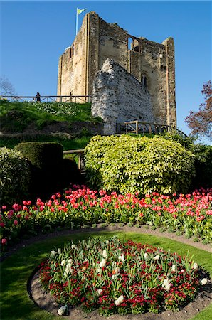 Spring flowers in ornamental beds decorate Guildford Castle, Guildford, Surrey, England, United Kingdom, Europe Stock Photo - Rights-Managed, Code: 841-07081897