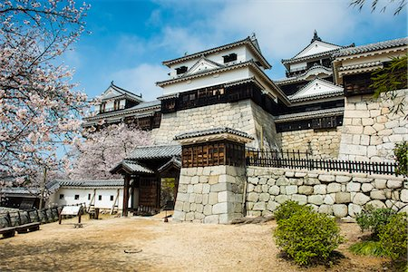 Cherry blossom in the Matsuyama Castle, Shikoku, Japan, Asia Stock Photo - Rights-Managed, Code: 841-07083653