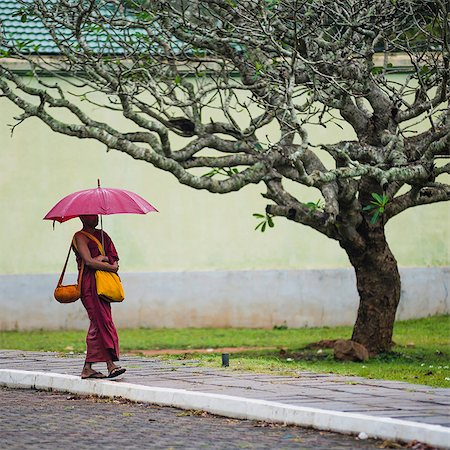 Buddhist monk at Sri Maha Bodhi in the Mahavihara (The Great Monastery), Sacred City of Anuradhapura, UNESCO World Heritage Site, Sri Lanka, Asia Stock Photo - Rights-Managed, Code: 841-07204260