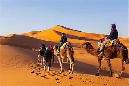 Tourists on camel safari, Sahara Desert, Merzouga, Morocco, North Africa, Africa Stock Photo - Rights-Managed, Code: 841-07204398