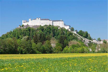 Fortress Hohensalzburg, Salzburg, Salzburger Land, Austria, Europe Stock Photo - Rights-Managed, Code: 841-07204455