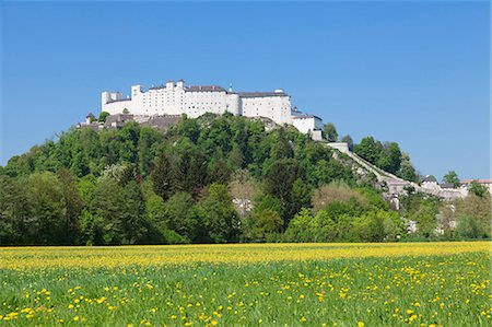 Fortress Hohensalzburg, Salzburg, Salzburger Land, Austria, Europe Stock Photo - Rights-Managed, Code: 841-07204455