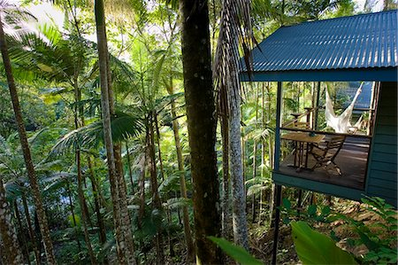 Silky Oaks Lodge in the treetops of Daintree Rainforest, Queensland, Australia Stock Photo - Rights-Managed, Code: 841-07204971