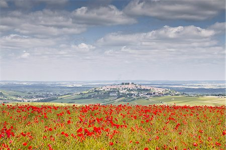 The village of Sancerre with a field of poppies in the foreground, Cher, Centre, France, Europe Stock Photo - Rights-Managed, Code: 841-07206556