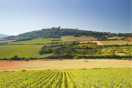 Vineyards near to the hilltop village of Vezelay in the Yonne area of Burgundy, France, Europe Stock Photo - Rights-Managed, Code: 841-07206551