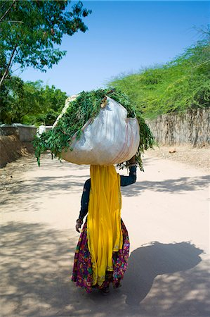 farmhand (female) - Indian woman villager working at farm smallholding carrying animal feed at Sawai Madhopur near Ranthambore in Rajasthan, India Stock Photo - Rights-Managed, Code: 841-07540435