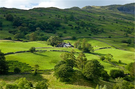 Hill farm near Ambleside in the Lake District National Park, Cumbria, UK Stock Photo - Rights-Managed, Code: 841-07540502