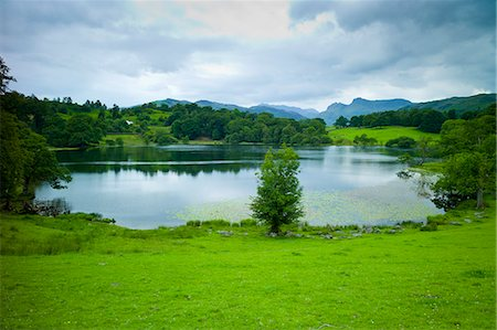 Loughrigg Tarn lake in the Lake District National Park, Cumbria, UK Stock Photo - Rights-Managed, Code: 841-07540513