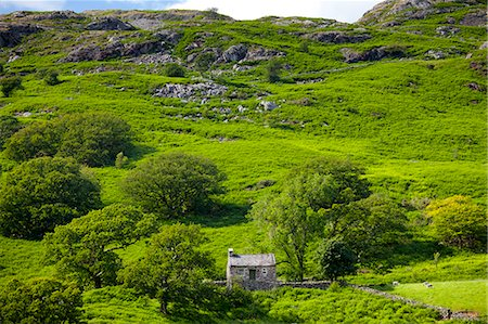 Stone cottage in Hard Knott Pass near Eskdale in the Lake District National Park, Cumbria, UK Stock Photo - Rights-Managed, Code: 841-07540523