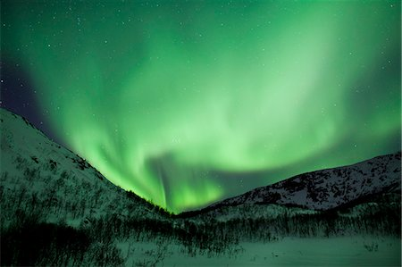 The Aurora Borealis, the spectacular Northern Lights fill the sky with dazzling green light above Kvaloya island at Tromso in the Arctic Circle in Northern Norway Stock Photo - Rights-Managed, Code: 841-07540686