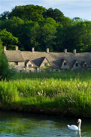 quaint house - Swan on River Coln by Arlington Row cottages traditional almshouses in Bibury, Gloucestershire in The Cotswolds, UK Stock Photo - Rights-Managed, Code: 841-07540717