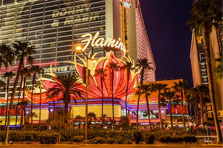 Neon lights, Las Vegas Strip at dusk with Flamingo Facade and palm trees, Las Vegas, Nevada, United States of America, North America Stock Photo - Rights-Managed, Code: 841-07782009