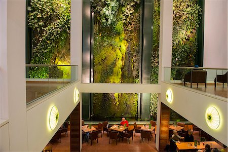 europe coffee shop - Vertical garden or living wall designed by Patrick Blanc at the Dussman Das Kulturkaufhaus in Berlin, Gemany, Europe Stock Photo - Rights-Managed, Code: 841-07782182