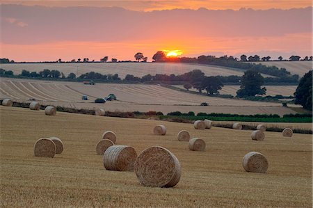 roll (people and animals rolling around) - Round hay bales at harvest with sunset, Swinbrook, Cotswolds, Oxfordshire, England, United Kingdom, Europe Stock Photo - Rights-Managed, Code: 841-07913960
