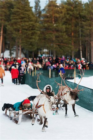 Sami people at winter festival, reindeer race, Jokkmokk, Lapland, Arctic Circle, Sweden, Scandinavia, Europe Stock Photo - Rights-Managed, Code: 841-08101846