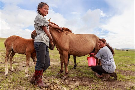 Lady milks mare (horse), daughter holds foal, Summer nomad camp, Khujirt, Uvurkhangai (Ovorkhangai), Central Mongolia, Central Asia, Asia Stock Photo - Rights-Managed, Code: 841-08239966