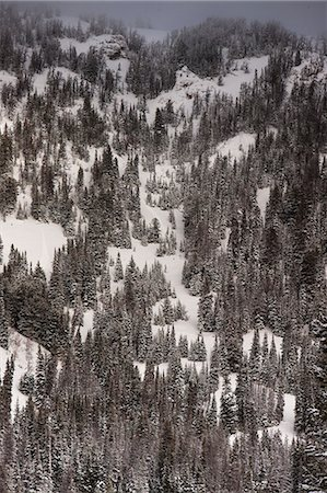 Grand Teton National Park, Jackson Hole, Wyoming, United States of America, North America Stock Photo - Rights-Managed, Code: 841-08279250