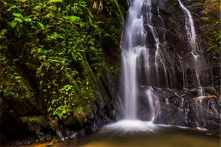 Cucharillos Waterfall in the Mashpi Cloud Forest area of the Choco Rainforest, Ecuador, South America Stock Photo - Rights-Managed, Code: 841-08421015