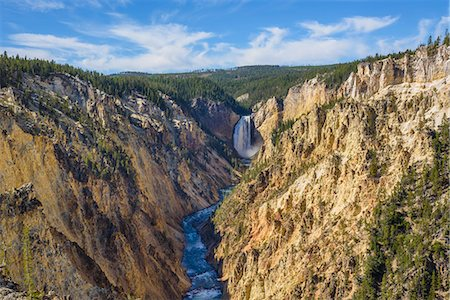 Artists Point looking towards Lower Falls, Grand Canyon, Yellowstone National Park, UNESCO World Heritage Site, Wyoming, United States of America, North America Stock Photo - Rights-Managed, Code: 841-08421438