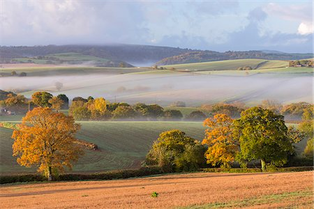 dartmoor national park - Misty morning over rolling autumnal countryside, Dartmoor, Devon, England, United Kingdom, Europe Stock Photo - Rights-Managed, Code: 841-08438754