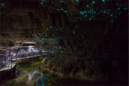Glow worms in Waitomo Caves, Waikato Region, North Island, New Zealand, Pacific Stock Photo - Rights-Managed, Code: 841-08645289