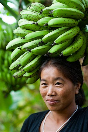 A woman collects bananas and balances them on her head to carry, near Manipur, India, Asia Stock Photo - Rights-Managed, Code: 841-08663557
