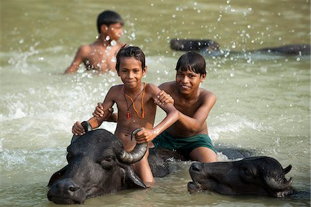 preteen boy shirtless - Children play in a river with the water buffaloes, Kapilvastu District, Nepal, Asia Stock Photo - Rights-Managed, Code: 841-08797848