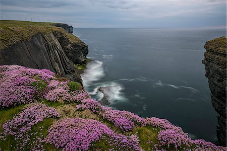 scenic - Loop Head, County Clare, Munster, Republic of Ireland, Europe Stock Photo - Rights-Managed, Code: 841-08821627