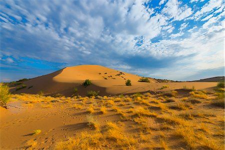 Singing Dunes, Altyn-Emel National Park, Almaty region, Kazakhstan, Central Asia, Asia Stock Photo - Rights-Managed, Code: 841-08860624