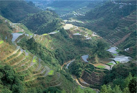 philippine terrace farming - Banaue terraced rice fields, UNESCO World Heritage Site, northern area, island of Luzon, Philippines, Southeast Asia, Asia Stock Photo - Rights-Managed, Code: 841-02715494